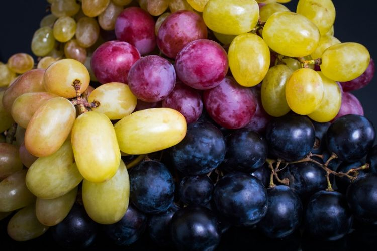Fresh Take for October: Grapes!