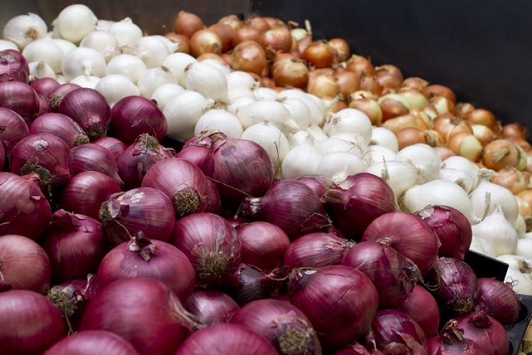 Tips on selling onions year-round