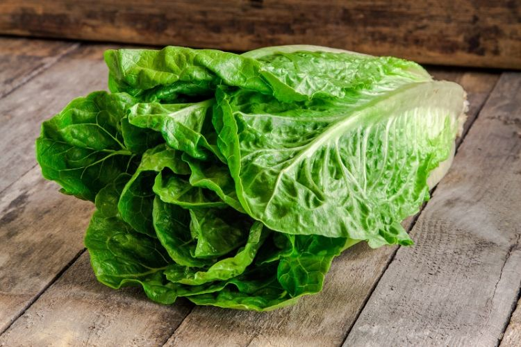 A Different Perspective on the Recent Romaine Alert