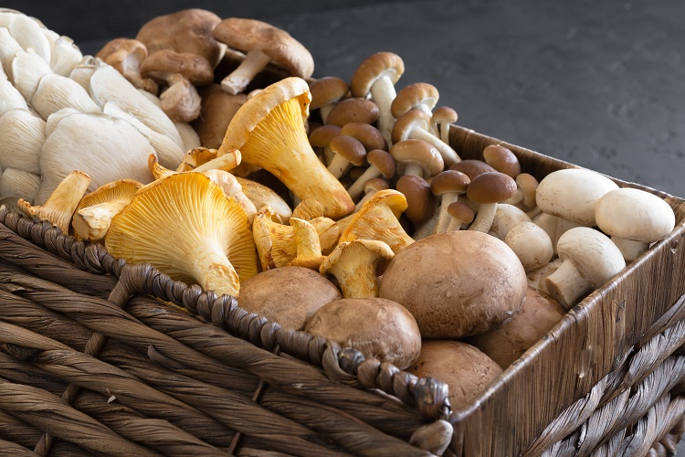 Merchandising With Mushrooms