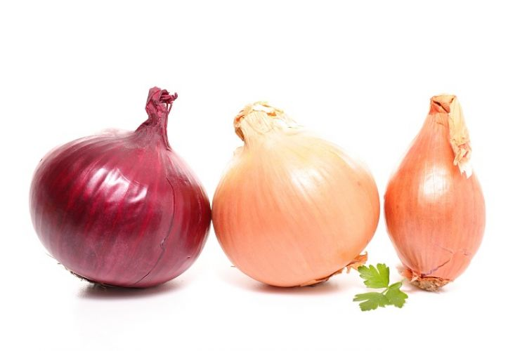 Onion: Market Update 3/13/19