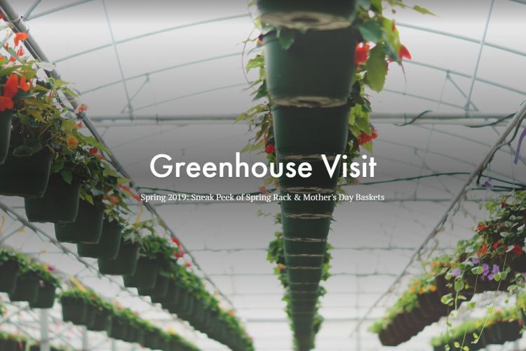 Greenhouse Visit Sneak Peak: Spring Rack & Mother's Day