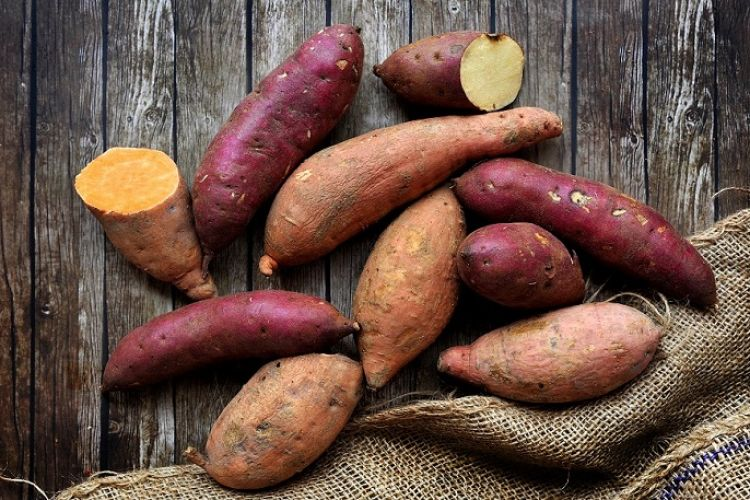 Everything You Wanted To Know About Sweet Potatoes